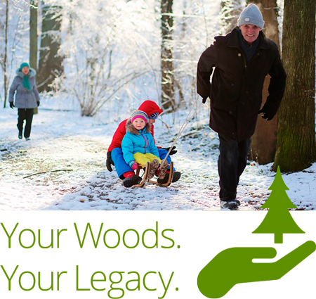 Your Woods Your Legacy Photo